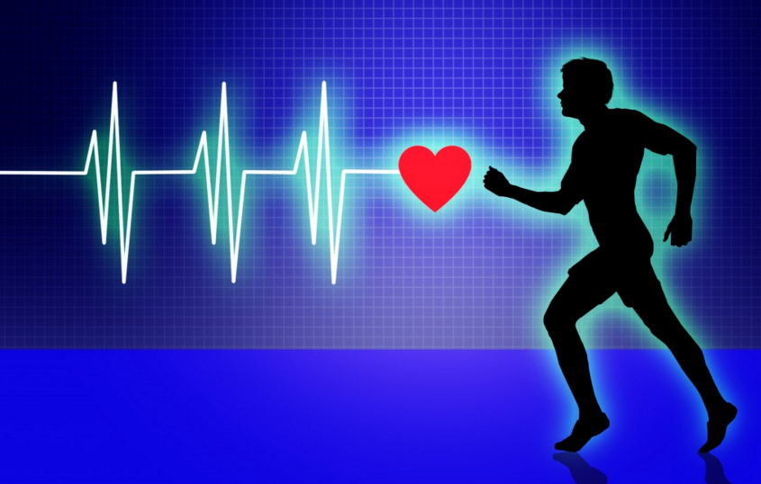 What are Your Resting, Maximum and Target Exercise Heart Rates?